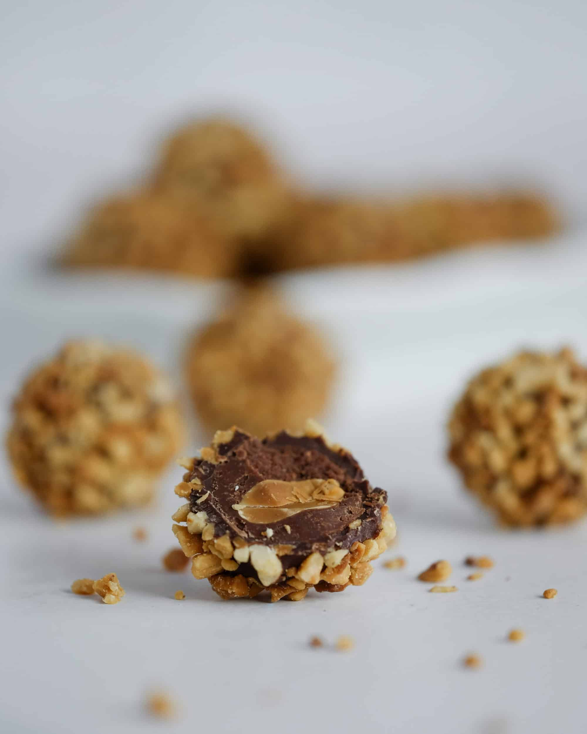 Chocolate Peanut Truffle cut and up close
